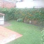 Part of the garden area