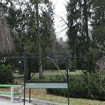 Angolo del Parco 5