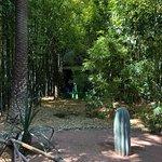 马若雷勒花园照片