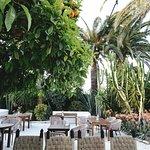 Garden Finca La Plaza
