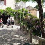 Treviso bike tasting