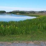 Roro naturreservat Image