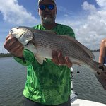 These are some of the fish we catch in the St.Augustine,Florida area