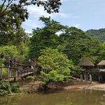 Foto de Khao Kheow Open Zoo