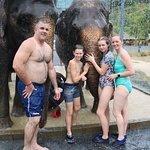 Green Elephant Sanctuary Park Photo