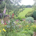 The gardens in summer at Pardlestone Farm.