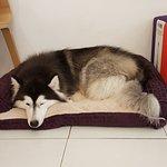 Her cosy corner