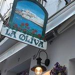 La Oliva Photo