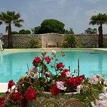 heerlijk zwembad wat geweldig schoon werd gehouden