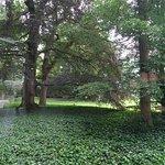 tuin;Noord Brabants Museum Den Bosch