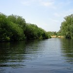 River Waveney from the Big Dog...