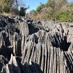 Photo of Tsingy de Bemaraha Strict Nature Reserve