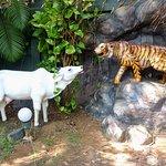 Temple de Kudroli Gokarnath - Parc avec statues d'animaux