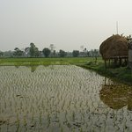 Photo of Chitwan National Park
