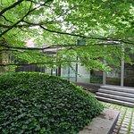 tuin; Noord Brabants Museum Den Bosch