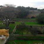 Parco rurale di Masseria Ottava grande