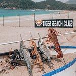 Tiger Beach Club