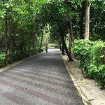 Sun Island Resort and Spa ภาพถ่าย
