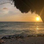 Tamarijn Aruba All Inclusive ภาพถ่าย
