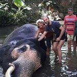 Would you like to Bath an Elephant in sri lanka ?