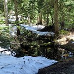 Some snow remains in late May