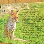 Parco Faunistico di Spormaggiore ภาพถ่าย