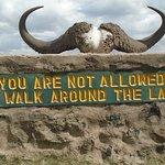 africa natural tours and safaris