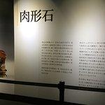 国立故宫博物院照片