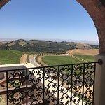 DAOU Vineyards ภาพถ่าย