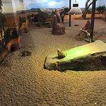 Saskatoon Forestry Farm Park & Zoo resmi