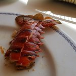 Lorenzillo's Restaurant Cabo San Lucas Photo