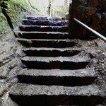 Nahuku - Thurston Lava Tube resmi