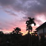 索菲特斐济度假村照片