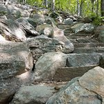 Photo de Mount Monadnock State Park