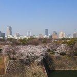 View of Osaka City