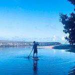 Oahu Spot Tours ภาพถ่าย