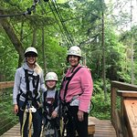 Canopy Tours Northwest Image