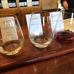 Foto de Gibbston Valley Wines