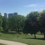 Photo of High Park