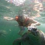 Nadando al lado de las tortugas