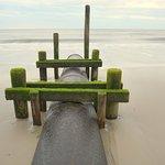 Foto di Cape May City Beaches