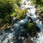 Cascade Springs照片
