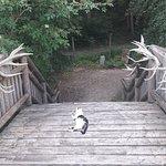 ภาพถ่ายของ Natur-und Erlebnispark Buchenberg