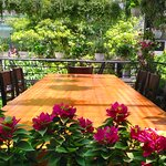 Casa Rooftop Garden