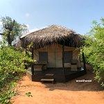 Tusker Tent (exterior)