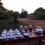Light refreshments after safari