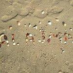 Пляж. Вид из номера.