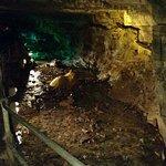Foto di Howe Caverns