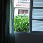 Ein Baum dirket vorm Schlafzimmerfenster ist bei Wind sehr laut.