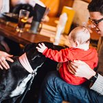 Dog Friendly and Child Friendly